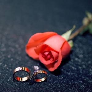 过年父母催婚怎么办?这篇反催婚指南送给你!