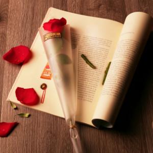 你一生会被爱情骗子骗几次?