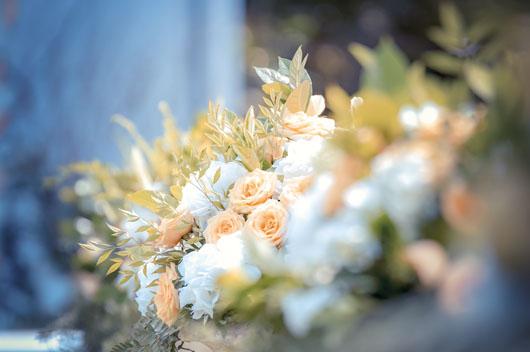 一年一度催婚潮来袭,你该如何应对?