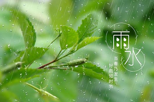 雨水节气如何养生